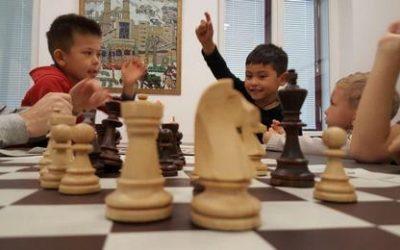 Онлайн-курс по шахматам для детей 5+