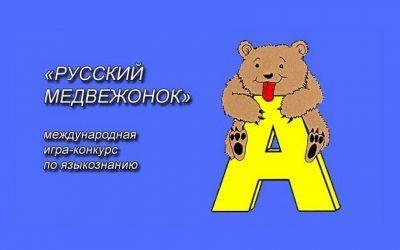 Результаты конкурса «Русский медвежонок – языкознание для всех» по Словении